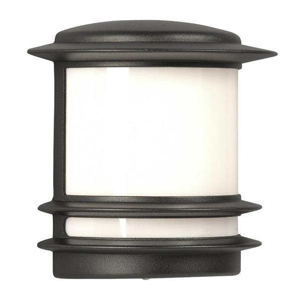 Galaxy 9.5-in Black White Glass Outdoor Wall Light