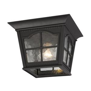 Galaxy 10.87-in Black 1-Light Outdoor Flush Mount Light