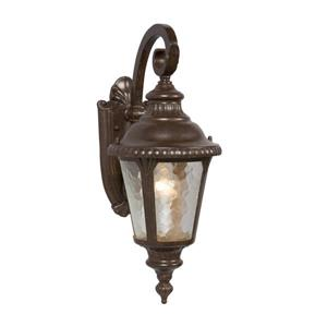 Galaxy 19.25-in Bronze Water Glass Outdoor Wall Light