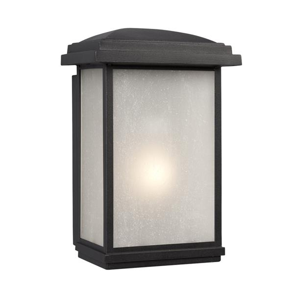 Galaxy 12.75-in Black Frosted Glass Outdoor Wall Light
