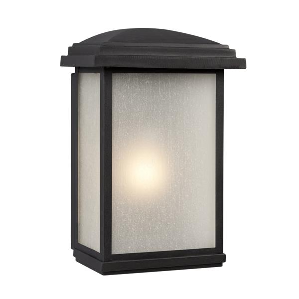 Galaxy 16-in Black Rectangular Frosted Glass Outdoor Wall Light