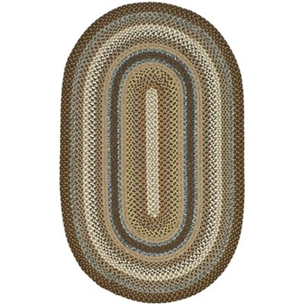 Safavieh Braided Brown and Multi-Colored Area Rug,BRD313A-8O
