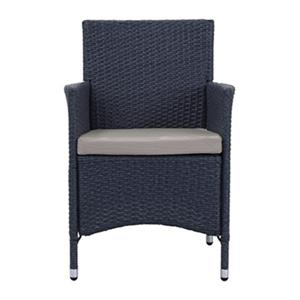 Safavieh 34.3-in x 22.8-in Titanium Wicker Kendrick Solid Chair (Set of 2)