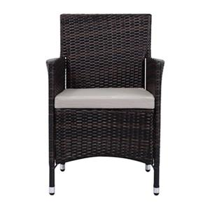 Safavieh 34.3-in x 22.8-in Dark Brown Wicker Kendrick Solid Chair (Set of 2)