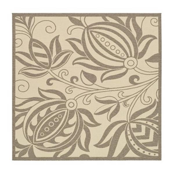 Safavieh CY2961-3001 Courtyard Indoor/Outdoor Area Rug, Natu