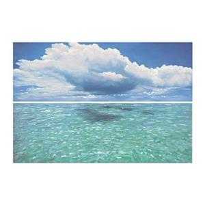 Safavieh 32-in x 48-in Caribbean Seas Diptych Wall Art