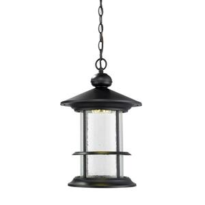 Z-Lite Genesis Outdoor LED Suspended Light - Black