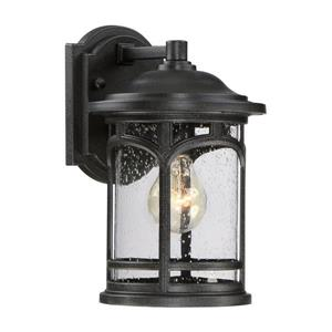Quoizel Marblehead 11-in Mystic Black Medium Base Outdoor Wall Light