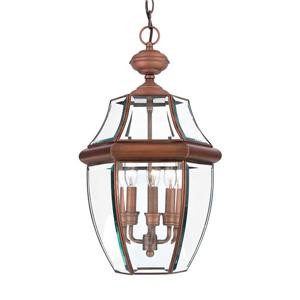 Quoizel Newbury Aged Copper Traditional Clear Glass Lantern Pendant