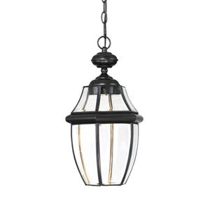 Quoizel Newbury Clear LED Mystic Black Traditional Clear Glass Lantern LED Pendant