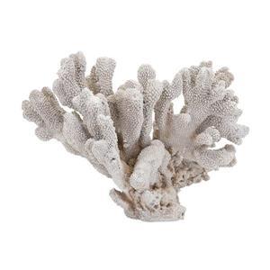 IMAX Worldwide White Pavaka Coral Polyresin Statue