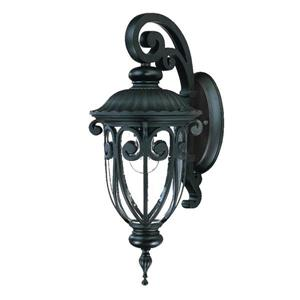 Acclaim Lighting Naples 18-in Matte Black Aluminum Outdoor Wall Lantern
