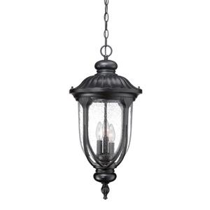 Acclaim Lighting Laurens Lantern - 3 Bulbs - Black
