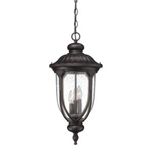 "Acclaim Lighting Laurens Lantern - 3 Bulbs - 24.5"" - Black"