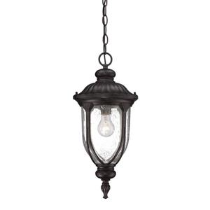 Acclaim Lighting Laurens Lantern - 1 Bulb - Black