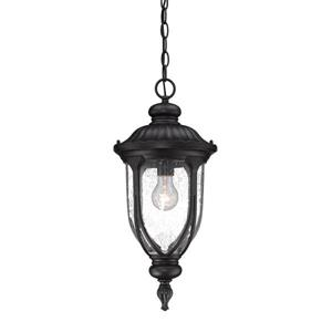 "Acclaim Lighting Laurens Lantern - 1 Bulb - 20.5"" - Black"