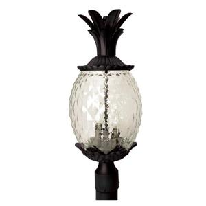Acclaim Lighting Lanai Outdoor Lantern  - 3 Bulbs - Black
