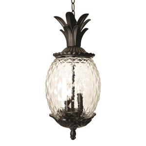 "Acclaim Lighting Lania Lantern - 2 Bulbs - 21"" - Black"