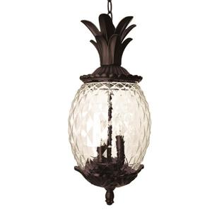 Acclaim Lighting Lania Lantern - 3 Bulbs - 21-in - Black