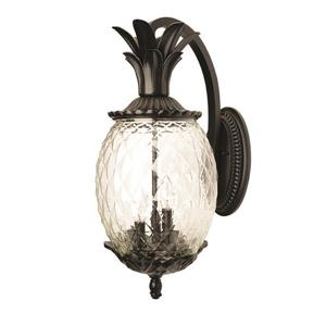 Acclaim Lighting Lanai 18-in Matte Black Clear Glass Outdoor Wall Lantern