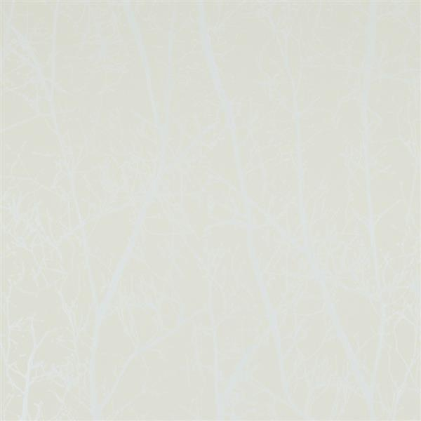 Walls Republic Beige/Pearl Contemporary Winter Tree Wallpaper