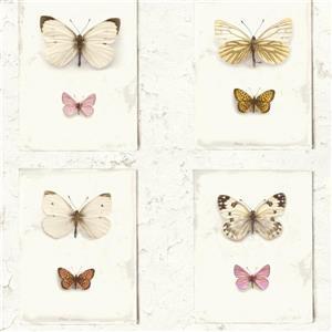Papier peint, papillon rustique