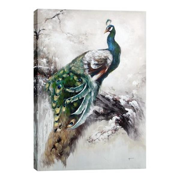 ArtMaison Canada Peacock Canvas Art