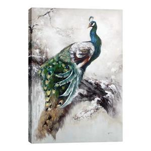 ArtMaison Canada Peacock Canvas Art