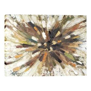 ArtMaison Canada Starburst 38-in x 48-in Canvas Art