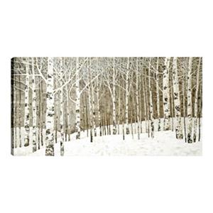 ArtMaison Canada Birch Trees 30-in x 60-in Oil Canvas Art
