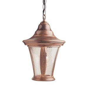 SNOC 81431 Orion Outdoor Pendant Light,81431AC