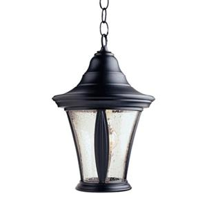 SNOC 81431 Orion Outdoor Pendant Light,81431BK