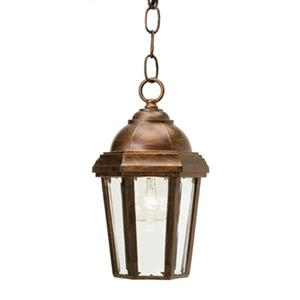 SNOC 81003 Vintage II Outdoor Pendant Light,81003AC