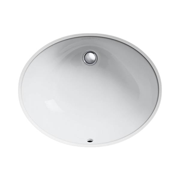 KOHLER Caxton 21.25-in White China Fire Clay Under Counter Sink