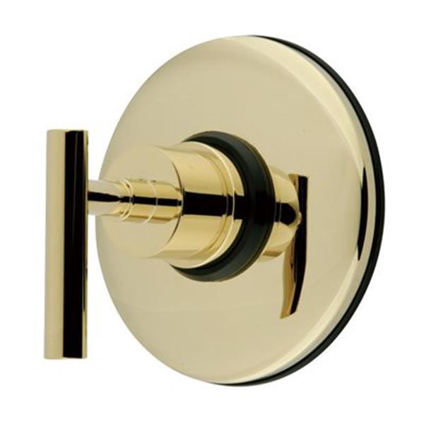 Elements of Design Polished Brass Shower Volume Control Valve