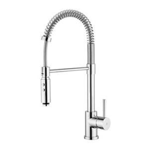 WS Bath Collections Evo 21-in Chrome Professional Kitchen Sink Mixer With 2 Spray Settings Sprayer