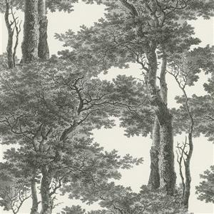 Papier peint arbres