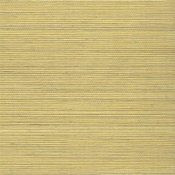 Walls Republic Brown Grasscloth Non-Woven Paste The Paper Duo Wallpaper