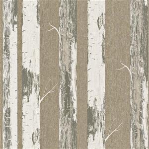 Walls Republic Gold Contemporary Metallic Paper Birch Wallpaper