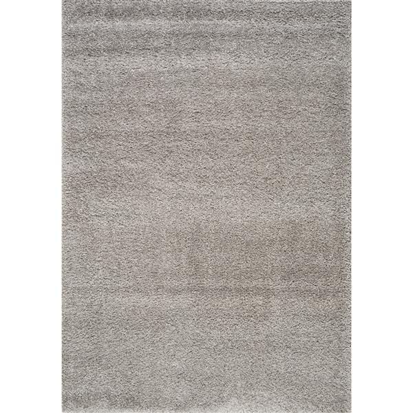 Tapis Shaggy de Kalora, 5' x 8', gris argenté