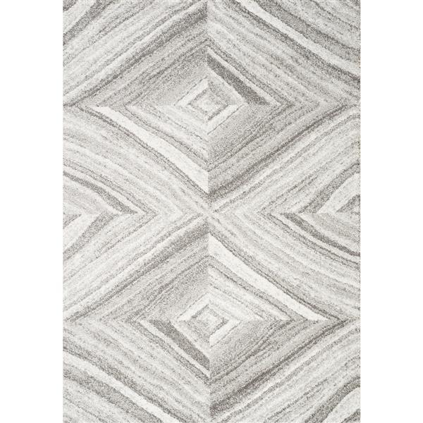 Tapis Sable géométrique de Kalora, 5' x 8', gris