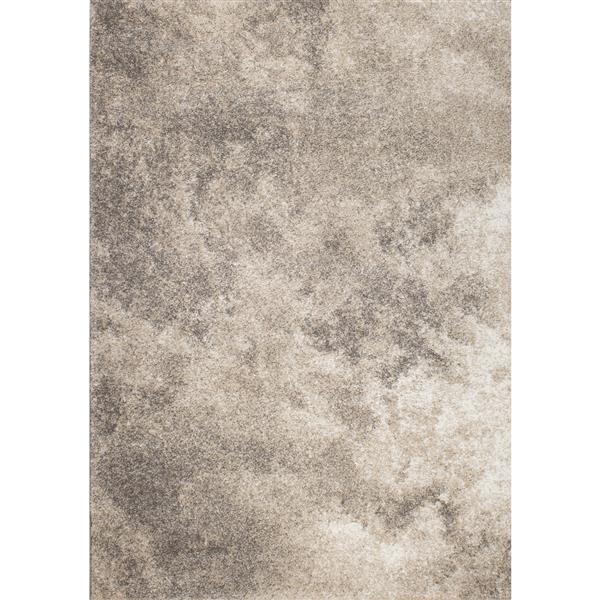 Tapis Sable nuages de Kalora, 8' x 11', gris