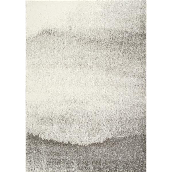Tapis Sable brouillard de Kalora, 2' x 4', gris