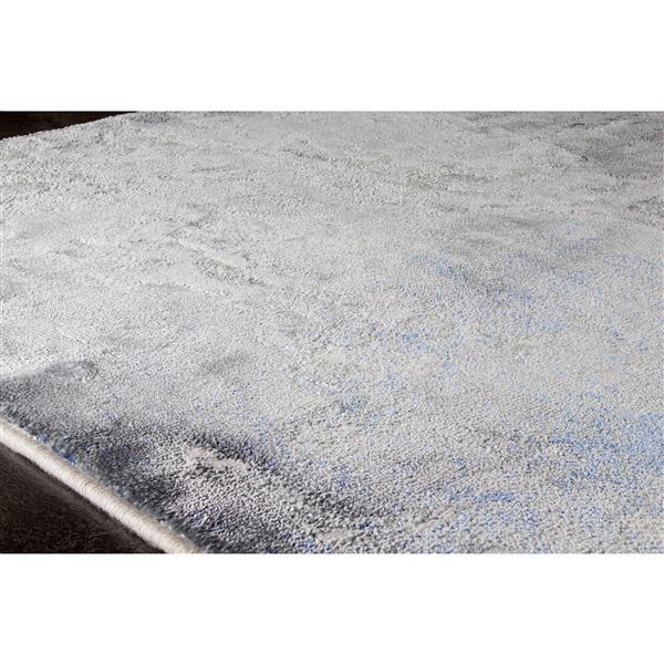Tapis Sabine abstrait délavé de Kalora, 5' x 8', gris