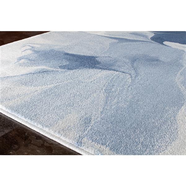 Tapis Platinum rideaux de Kalora, 5' x 8', blanc