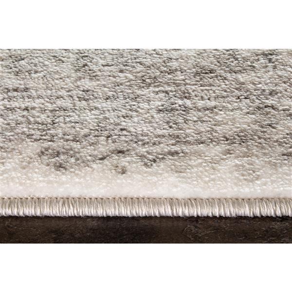 Kalora Platinum Transitional Shabby Rug - 8' x 11' -Grey