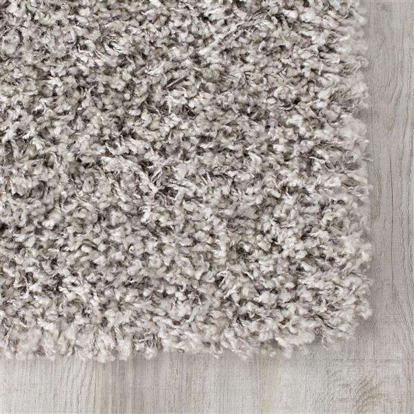 Tapis à polis longs Plateau de Kalora, 5' x 8', gris pâle