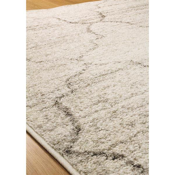 Tapis classique ogee Focus de Kalora, 5' x 8', gris pâle