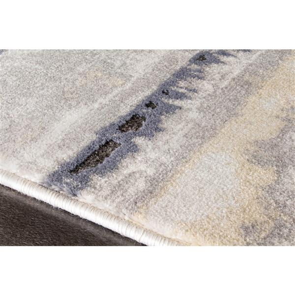 Tapis délavé Darcey de Kalora, 5' x 8', gris