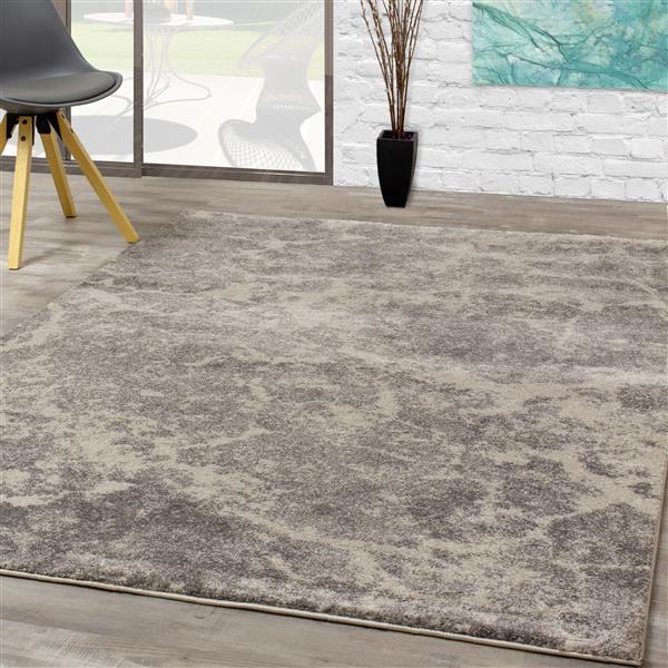 Tapis Breeze de Kalora, 5' x 8', gris
